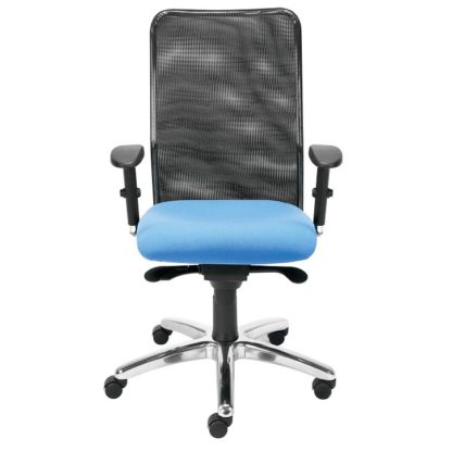 Office Task Chair With Adjustable Arms | Executive Seating | OP2
